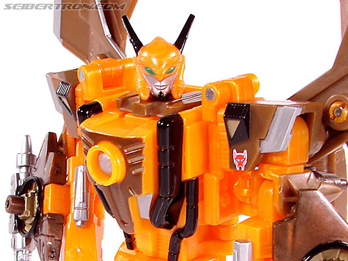 Transformers Convention & Club Exclusives Airazor (Image #87 of 132)