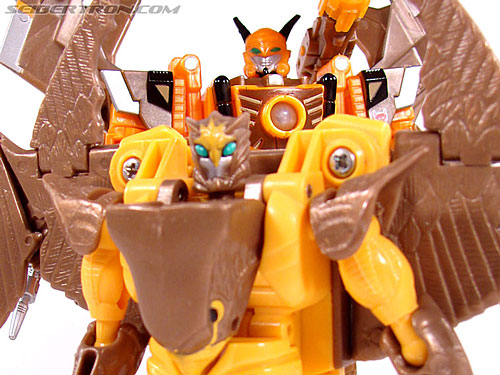 Transformers Convention & Club Exclusives Airazor (Image #112 of 132)