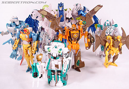 Transformers Convention & Club Exclusives Airazor (Image #117 of 132)