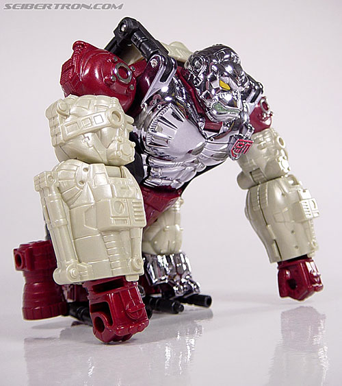 Transformers Convention & Club Exclusives Apelinq (Image #21 of 84)