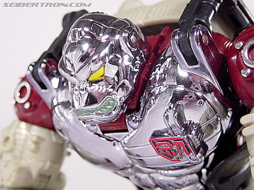 Transformers Convention & Club Exclusives Apelinq (Image #31 of 84)
