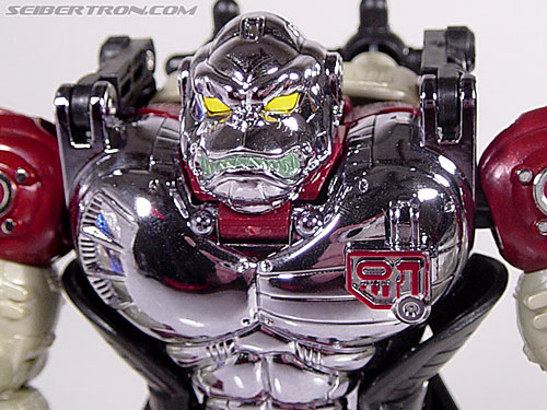 Transformers Convention & Club Exclusives Apelinq (Image #37 of 84)