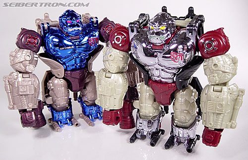 Transformers Convention & Club Exclusives Apelinq (Image #38 of 84)