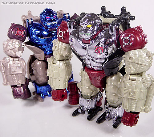 Transformers Convention & Club Exclusives Apelinq (Image #40 of 84)