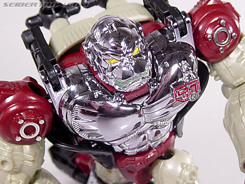 Transformers Convention & Club Exclusives Apelinq (Image #45 of 84)