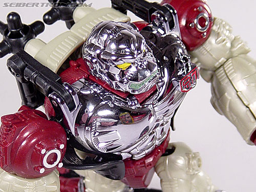 Transformers Convention & Club Exclusives Apelinq (Image #48 of 84)