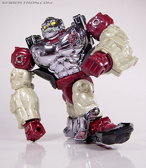Transformers Convention & Club Exclusives Apelinq (Image #55 of 84)