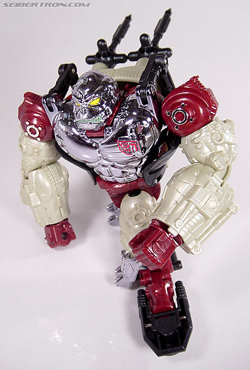 Transformers Convention & Club Exclusives Apelinq (Image #56 of 84)