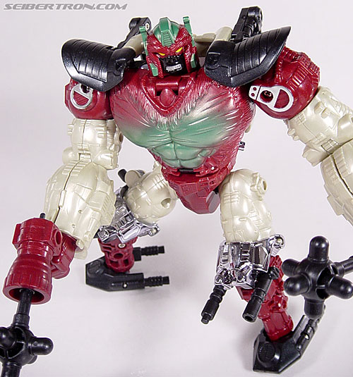 Transformers Convention & Club Exclusives Apelinq (Image #73 of 84)