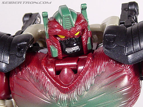 Transformers Convention & Club Exclusives Apelinq (Image #76 of 84)