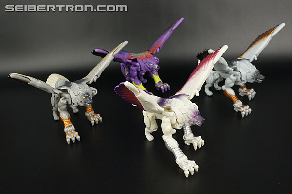 Transformers News: New Gallery: BotCon 1999 Windrazor