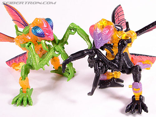Transformers Convention & Club Exclusives Dirge (Image #22 of 95)