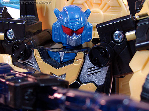 Transformers Convention & Club Exclusives Goldbug (Image #71 of 94)