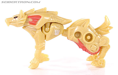 Transformers Convention & Club Exclusives Razorclaw (Image #11 of 62)