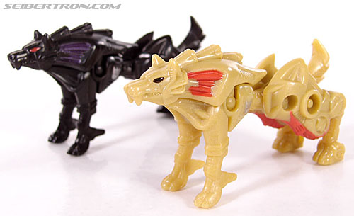 Transformers Convention & Club Exclusives Razorclaw (Image #21 of 62)