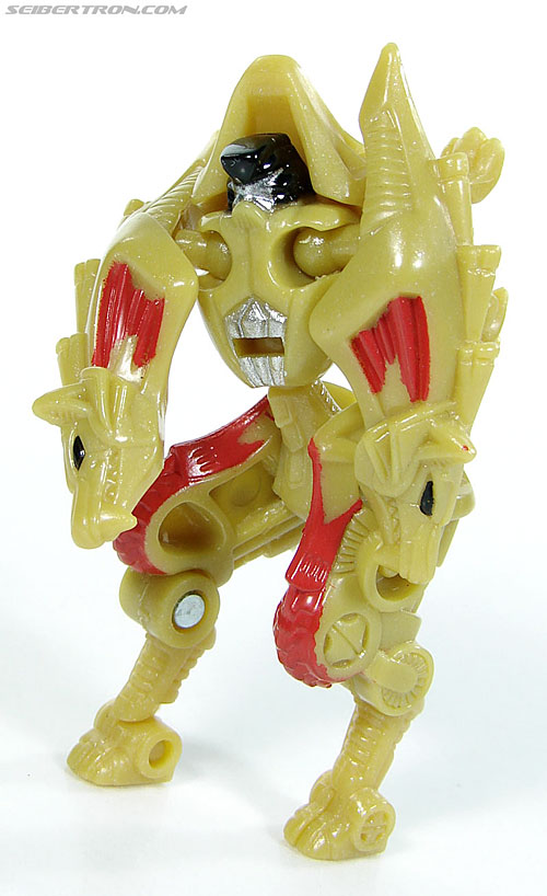 Transformers Convention & Club Exclusives Razorclaw (Image #46 of 62)