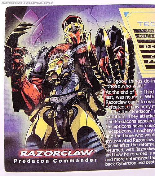 Transformers Convention & Club Exclusives Razorclaw (Image #5 of 84)