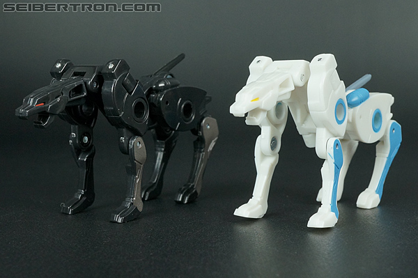Transformers Convention & Club Exclusives Ravage (Shattered Glass) (Image #86 of 118)