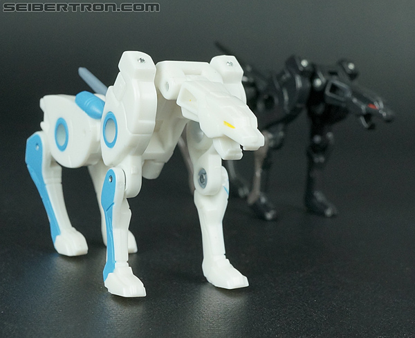 Transformers Convention & Club Exclusives Ravage (Shattered Glass) (Image #88 of 118)