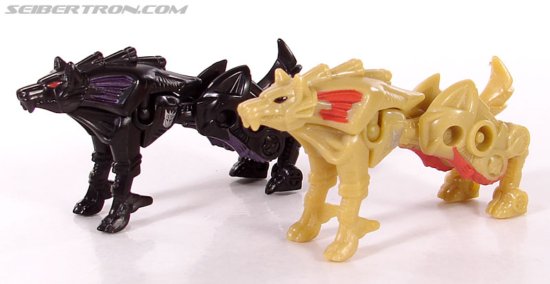 Transformers Convention & Club Exclusives Razorclaw (Image #20 of 62)