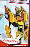 Convention & Club Exclusives Cheetor (Animated) - Image #2 of 141
