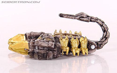 Transformers (2007) Premium Scorponok (Image #18 of 41)