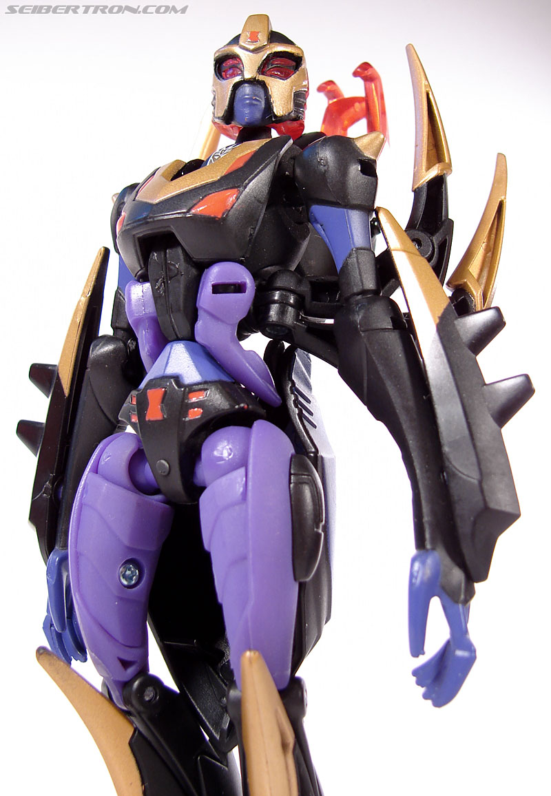 Transformers Animated Blackarachnia (Image #82 of 126)