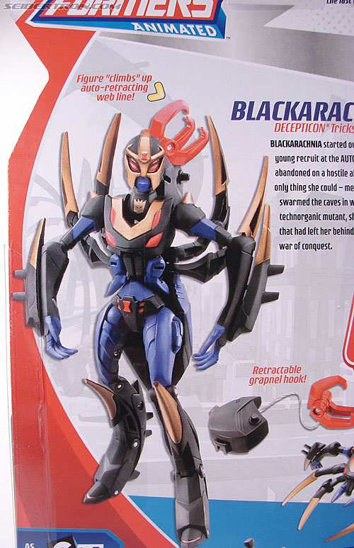 Transformers Animated Blackarachnia (Image #8 of 126)