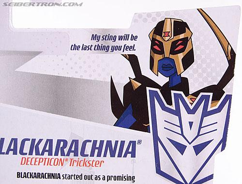 Transformers Animated Blackarachnia (Image #9 of 126)