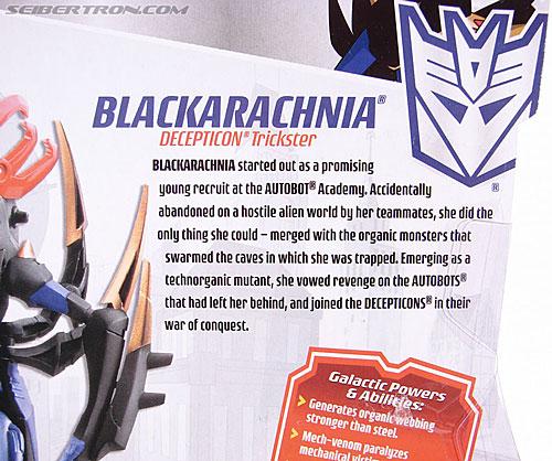 Transformers Animated Blackarachnia (Image #11 of 126)