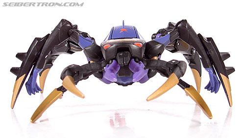 Transformers Animated Blackarachnia (Image #21 of 126)