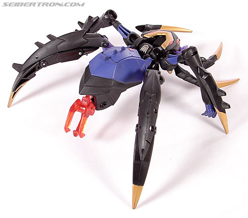 Transformers Animated Blackarachnia (Image #25 of 126)