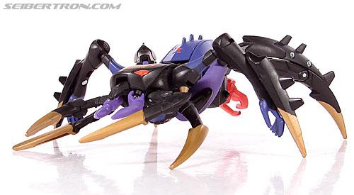 Transformers Animated Blackarachnia (Image #30 of 126)