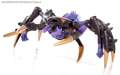 Transformers Animated Blackarachnia (Image #41 of 126)