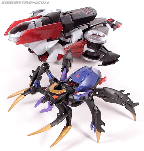 Transformers Animated Blackarachnia (Image #42 of 126)