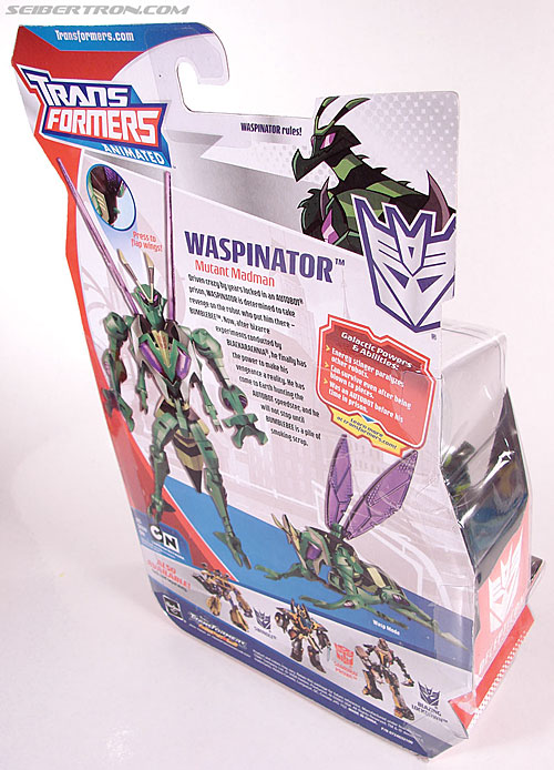 Transformers Animated Waspinator (Wasp) (Image #7 of 110)