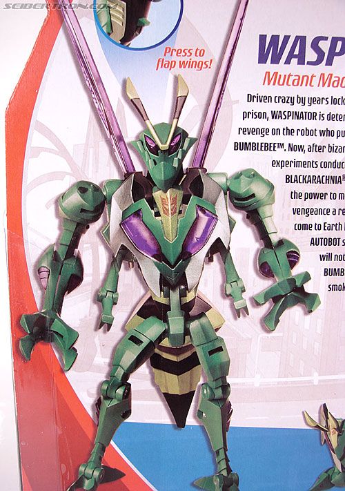 Transformers Animated Waspinator (Wasp) (Image #9 of 110)