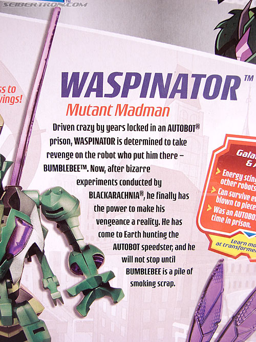 Transformers Animated Waspinator (Wasp) (Image #10 of 110)