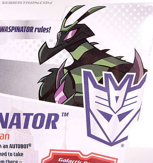 Transformers Animated Waspinator (Wasp) (Image #11 of 110)