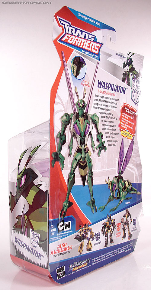 Transformers Animated Waspinator (Wasp) (Image #15 of 110)