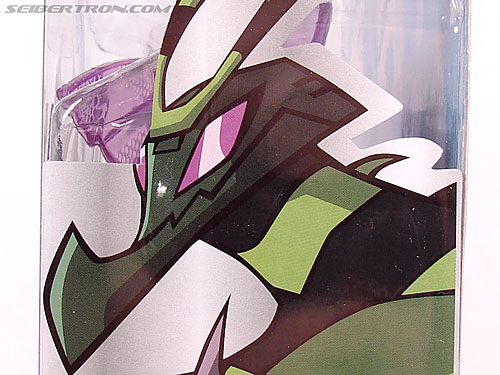 Transformers Animated Waspinator (Wasp) (Image #17 of 110)
