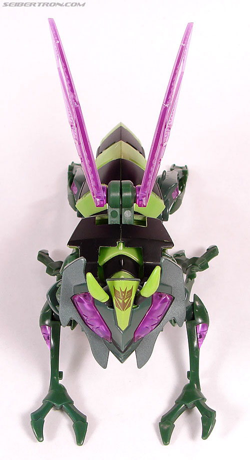 Transformers Animated Waspinator (Wasp) (Image #22 of 110)