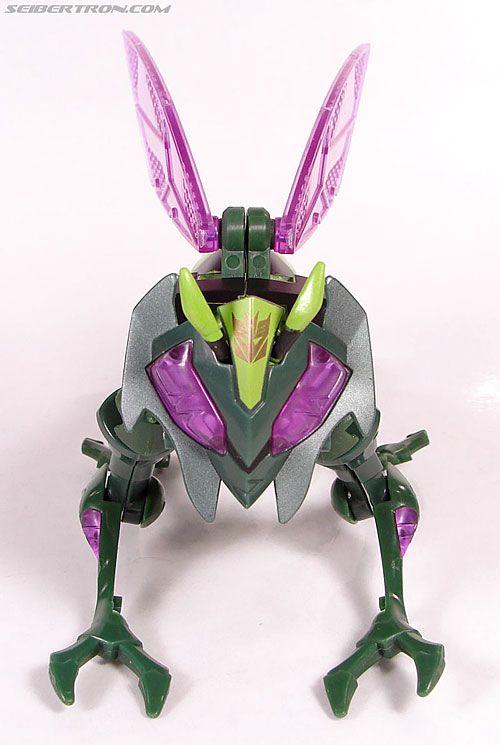 Transformers Animated Waspinator (Wasp) (Image #23 of 110)