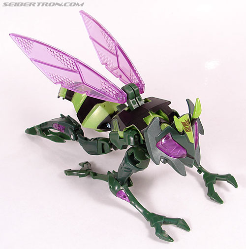 Transformers Animated Waspinator (Wasp) (Image #25 of 110)