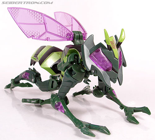 Transformers Animated Waspinator (Wasp) (Image #26 of 110)
