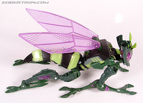 Transformers Animated Waspinator (Wasp) (Image #28 of 110)
