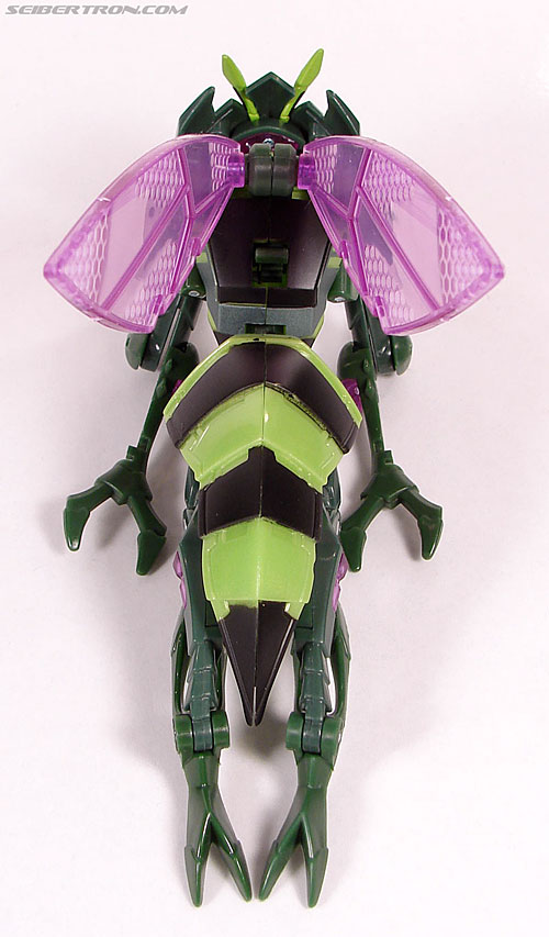 Transformers Animated Waspinator (Wasp) (Image #30 of 110)
