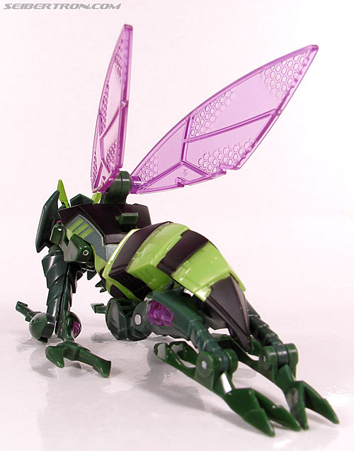 Transformers Animated Waspinator (Wasp) (Image #33 of 110)