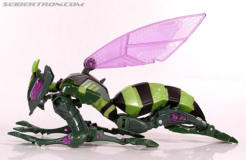 Transformers Animated Waspinator (Wasp) (Image #34 of 110)