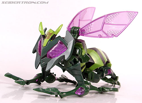 Transformers Animated Waspinator (Wasp) (Image #35 of 110)